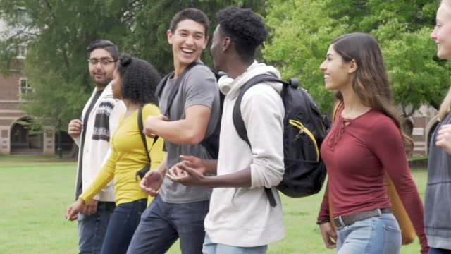 college student friends walking on campus - studente universitario video stock e b–roll