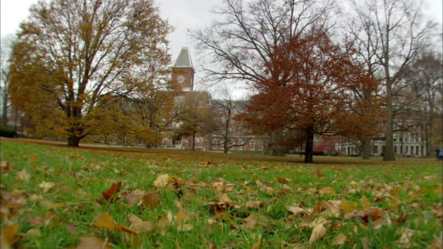 WS College students walking on sidewalk on campus quad tree leaves in Fall Autumn foliage colors some bare building clock tower BG