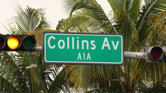 コリンズアベニューがマイアミのヤシの木 - オーシャンドライブ点の映像素材/bロール