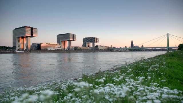cologne at sunrise - town stock-videos und b-roll-filmmaterial