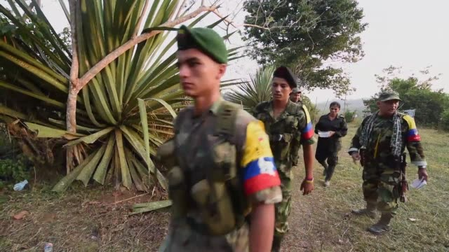 Colombia marks one year of its landmark peace deal with the FARC former guerrilla