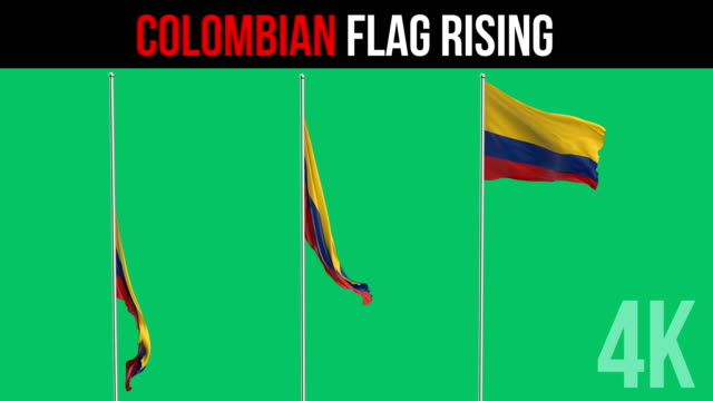 colombian flag - colombian flag stock videos and b-roll footage
