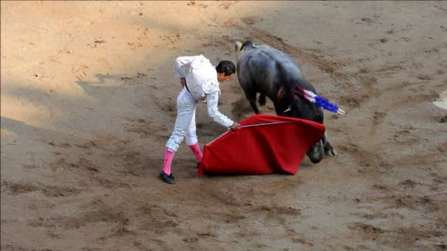 colombian matador luis bolivar was crowned cali bullfighting champion for the 2012 season on sunday clean cali crowns bullfighting champion on... - bullfighter stock videos & royalty-free footage