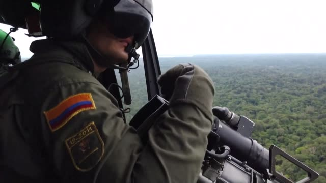 colombian police raid a coca field in tumaco, colombia following the state's defense minister's statement that the military will step up an offensive... - drug trafficking stock videos & royalty-free footage
