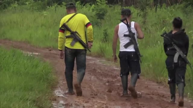 colombia's landmark peace deal with farc rebels was supposed to mean peace for all but a year on crime and violence still affect colombians - colombia stock videos and b-roll footage