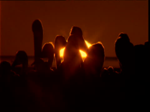 vidéos et rushes de colony of australian pelicans silhouetted by rising sun, lake eyre, south australia - colony