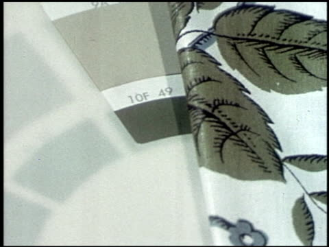 color harmony for your home - 14 of 19 - この撮影のクリップをもっと見る 2122点の映像素材/bロール