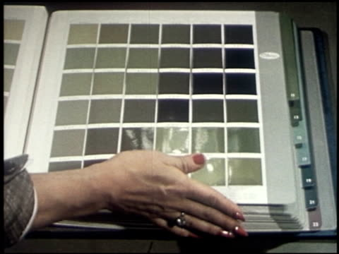color harmony for your home - 7 of 19 - この撮影のクリップをもっと見る 2122点の映像素材/bロール