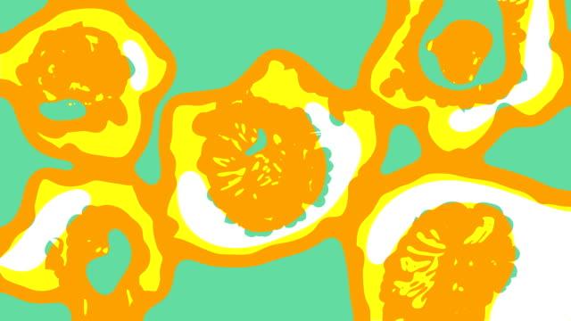 vídeos y material grabado en eventos de stock de hellebores: color (loop) - diseño floral