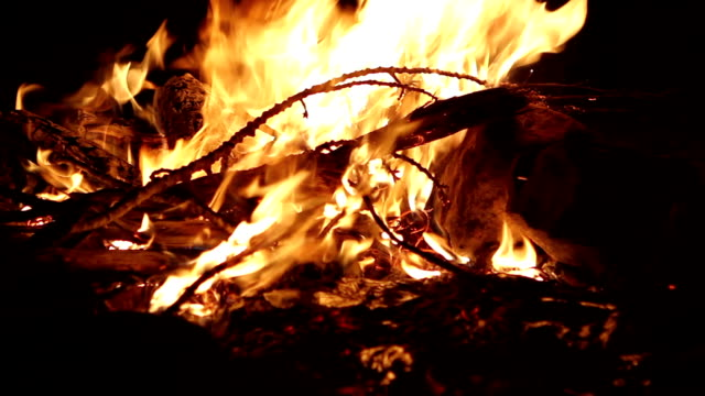 Colorado Camp Fire