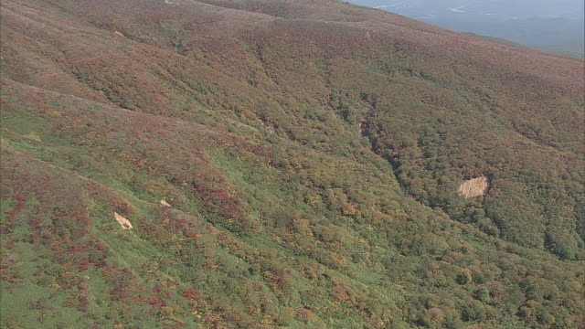 Colored Leaves of Mt.Kurikoma