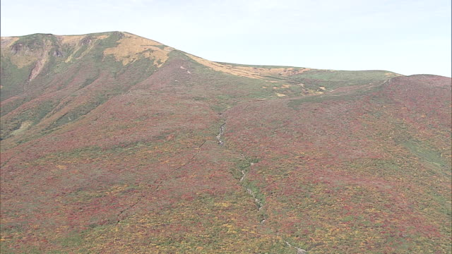 colored leaves of mt.kurikoma - 1 minute or greater stock videos & royalty-free footage