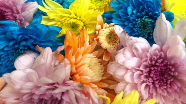vidéos et rushes de abstrait coloré de fleurs - multicolore