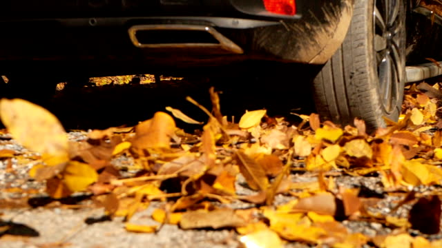 slow motion close up: colorful autumn leaves flying behind a car driving over - vermont stock videos & royalty-free footage
