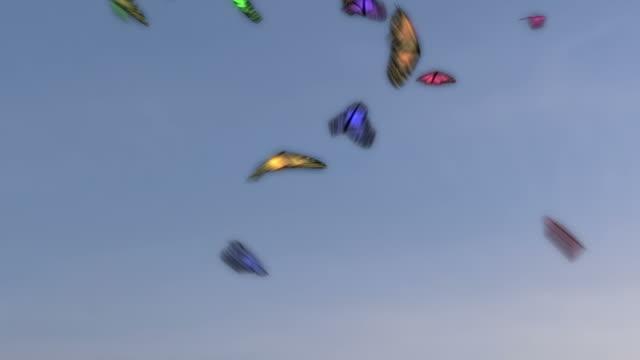 vídeos de stock, filmes e b-roll de borboletas voando colorida - lepidóptero