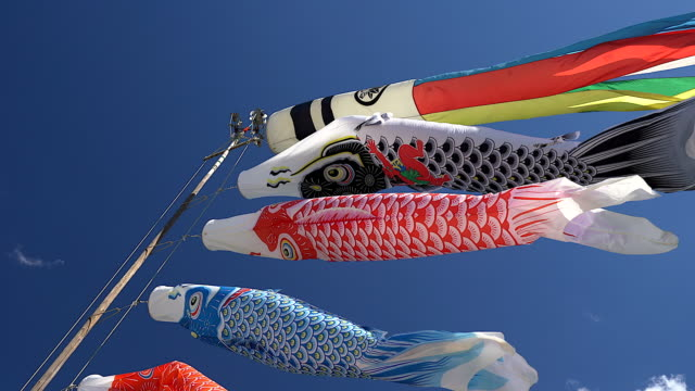 colorful carp kites in blue sky, decoration on the children's day, japan - flag blowing in the wind stock videos & royalty-free footage