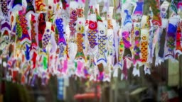 Colorful carp streamers or