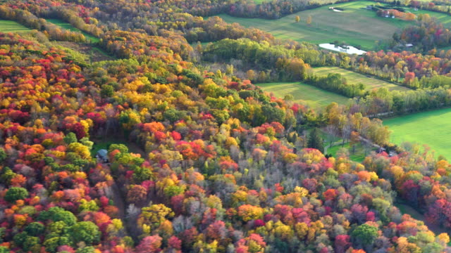 colorful fall trees and fields aerial - new england usa stock videos & royalty-free footage