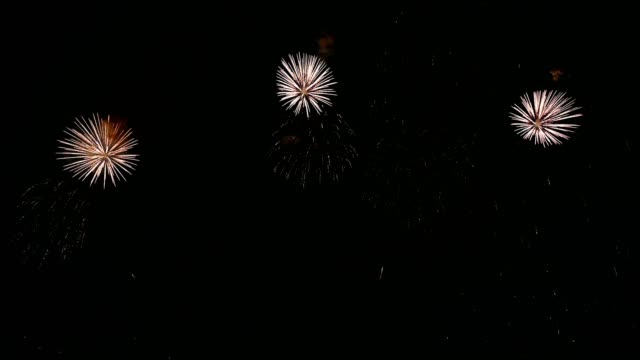 colorful fireworks exploding in annual festival - fashion show stock videos & royalty-free footage