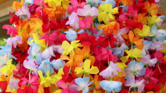 colorful hawaiian lei flower necklaces for sale in honolulu oahu - hawaii islands stock videos and b-roll footage