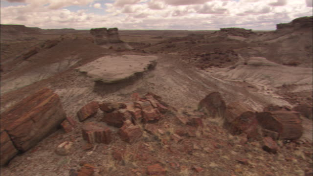 colorful petrified wood covers the ground in petrified forest national park. - arizona stock videos & royalty-free footage