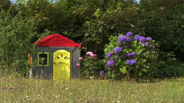 a colorful play house and a big, purple bush - spielzeughaus stock-videos und b-roll-filmmaterial