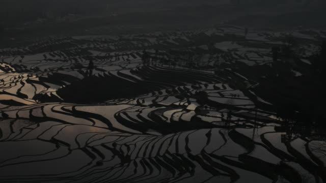 Campo de arroz colorido terraço na China