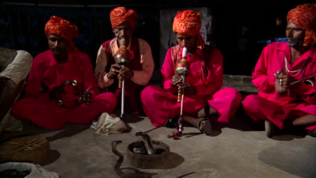 ms colorfully dressed snake charmers playing makuti flutes, mesmerized cobras (naja naja) in baskets in foreground, delhi, india - hypnosis stock-videos und b-roll-filmmaterial