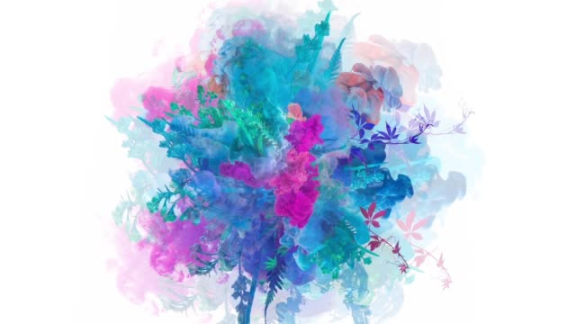 colors exploding with flowers - colors stock videos & royalty-free footage
