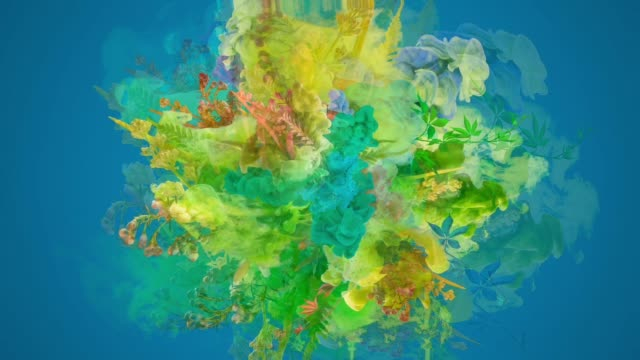 colors exploding with flowers - man made object stock videos & royalty-free footage