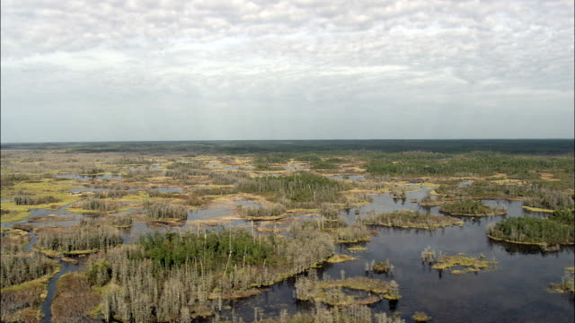 colors in the okefenokee swamp  - aerial view - georgia,  ware county,  united states - okefenokee national wildlife refuge stock videos and b-roll footage