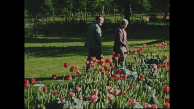 colour archive home movie footage of british home life circa 1940s - family gathered together outside, people working and walking in the garden. - british culture stock videos & royalty-free footage