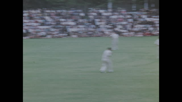 colour home movie footage of the south africa vs england test cricket series circa 1956-1957. - contestant stock videos & royalty-free footage