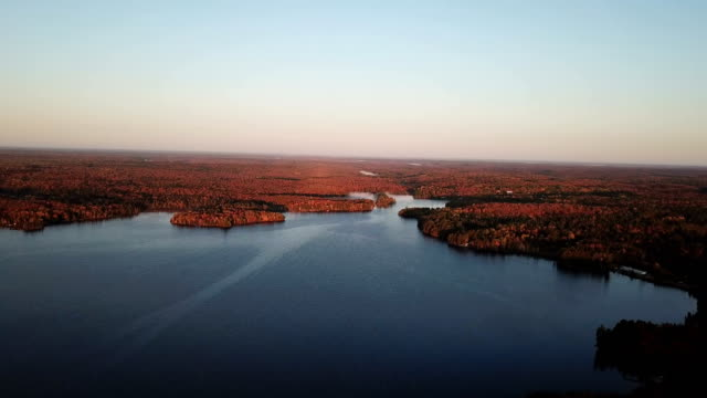 colourful autumn forest and blue lake, aerial top drone view - toronto stock videos & royalty-free footage