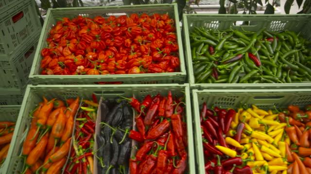 vídeos y material grabado en eventos de stock de colourful display of ripe chillies, uk - pimientos