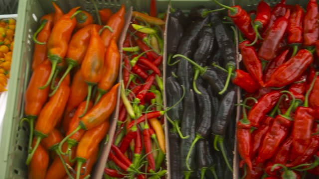 colourful display of ripe chillies, uk - pepper vegetable stock videos & royalty-free footage