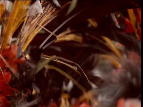 vidéos et rushes de colourful feather headdresses of papuan villagers at mount hagen show, papua new guinea - coiffe traditionnelle