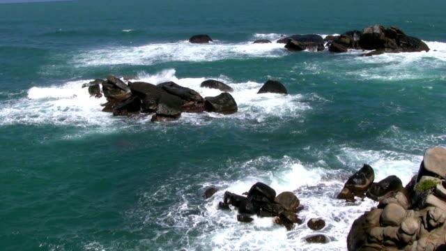 hd: columbian ocean - tayrona national park stock videos and b-roll footage