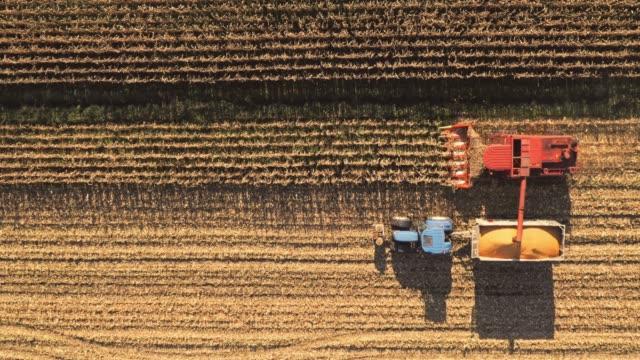 空中結合し、トウモロコシの作物を収穫トラクター - コンバイン点の映像素材/bロール