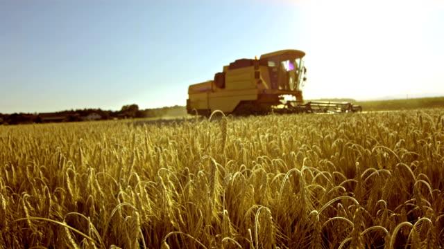 vídeos de stock, filmes e b-roll de colheitadeira combinada ao pôr-do-sol - maquinaria