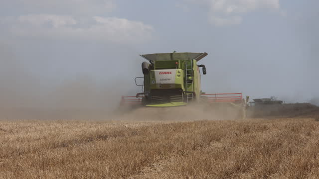 combine harvester at work in wheat field, in benfleet, essex, england, u.k., on tuesday, august 24, 2021. - dust stock videos & royalty-free footage