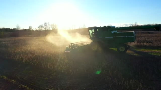 combine harvester cutting wheat in field in virginia - combine harvester stock videos & royalty-free footage