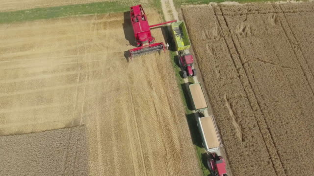 Mähdrescher Entlastung Weizen Flyover.