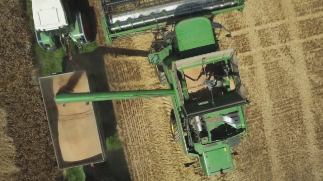 Combine Harvester Discharging Wheat Flyover