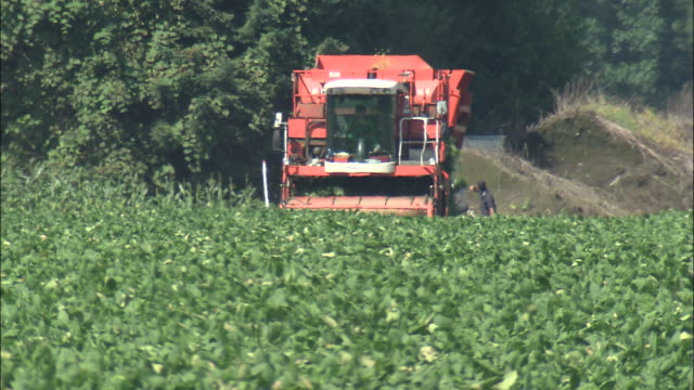 a combine harvester gathers up soybeans. - 農作業点の映像素材/bロール