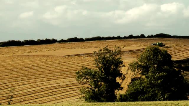 combine harvester harvesting a field time lapse - ショーハム・バイ・シー点の映像素材/bロール
