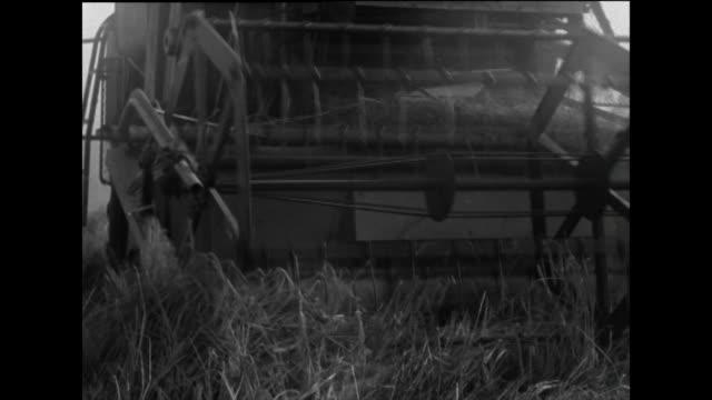 cu of combine harvester harvesting cereal crop; 1963 - 1963 stock videos & royalty-free footage