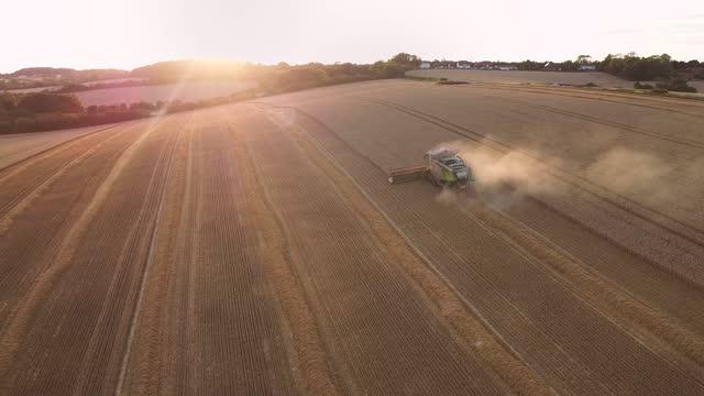 combine harvester harvesting field - harvesting stock videos & royalty-free footage