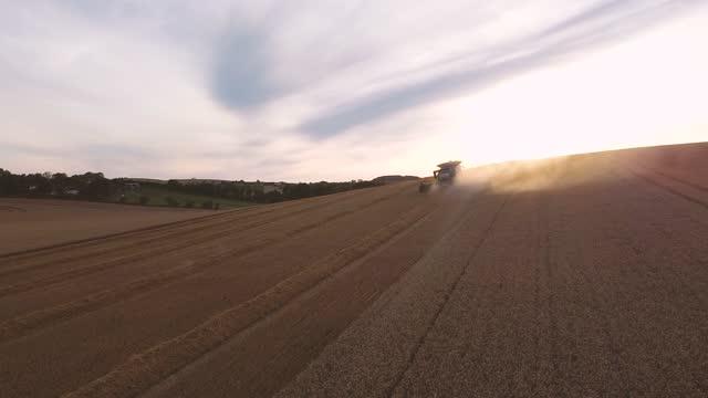 combine harvester harvesting field - kent england bildbanksvideor och videomaterial från bakom kulisserna