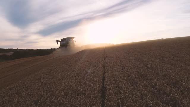 combine harvester harvesting field - farmer stock videos & royalty-free footage